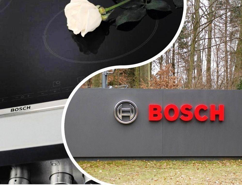 Плотове на Bosch - надеждни, стилни, най-добрите