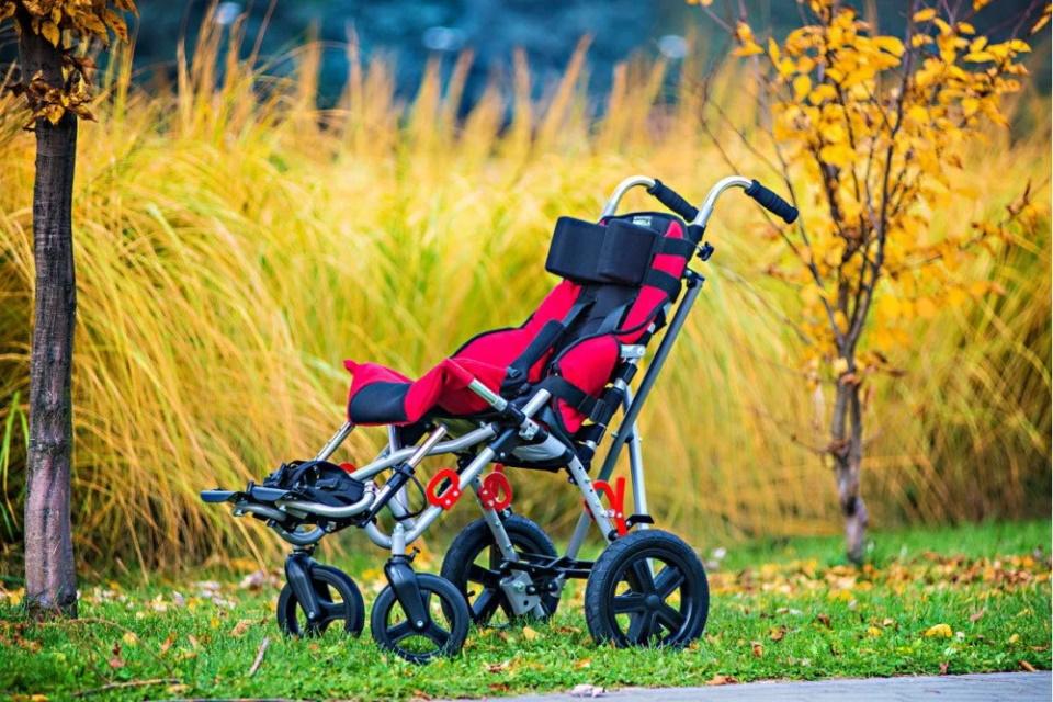 Рейтинг на най-добрите колички за деца с церебрална парализа за 2020 г.